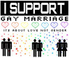 I support Gay marriage