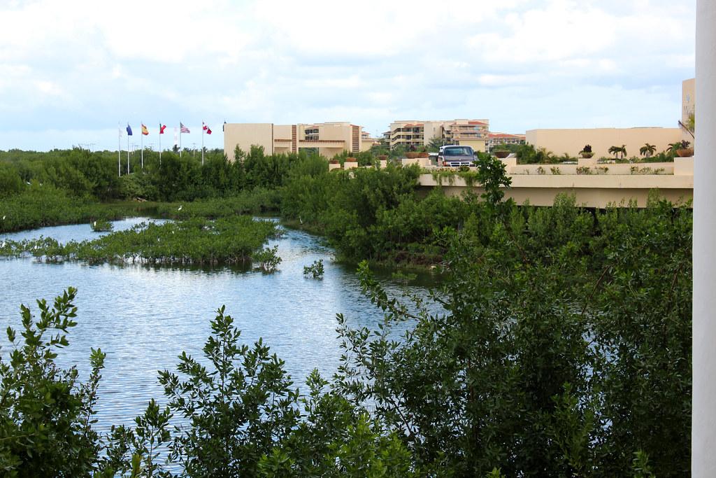 hotel swamp