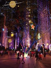 Ayala Triangle Symphony of Lights