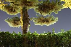 Jingu-Gaien (personal note) Tags: street city sky green japan architecture night train tokyo nikon scenery shibuya line nippon   coexistence nightview     2010 gaienmae sendagaya fumihikomaki omotesandou  sobu  jingugaien d40 tokyometropolitangymnasium omotesand  aoyama gaienmae