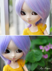 Sofia loves flowers (Au Aizawa) Tags: flower japanese doll purple clothes pullip rement celsiy