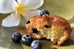 Blueberry muffin (IngeHG) Tags: light white home yellow singapore shadows plumeria terrace plate frangipani manual muffin blueberries darkblue goldenbrown blueberrymuffin jadegreen nikond90 326365 39daystogo ppt3652010