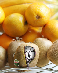 After hiding from fans and pans... (RR) Tags: food orange white playing silly frutas fruits face goofy fruit ink fun with emotion laranja egg humor cartoon papaya fruta eggs drawn kiwi oval huevo ei oeuf ovo playingwithfood ovos yumurta eggbert mamao theeggventures ofeggbert brincandocomacomidablog eggbert2