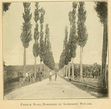 Photo, Cycling in Europe (book, 1899)