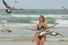 Birds (Martin Hesketh) Tags: girls sea seagulls beach birds delete10 delete9 delete5 delete2 florida delete6 delete7 save3 delete8 delete3 delete delete4 save save2 save4 save5 daytonabeach save6 daytona deletedbythehotboxuncensoredgroup