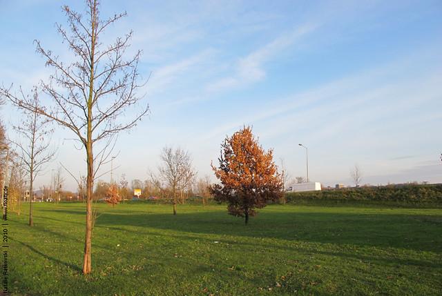 Hattingen, November 2010