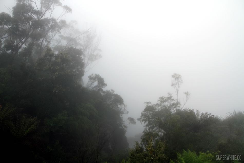 Sydney Blue Mountain