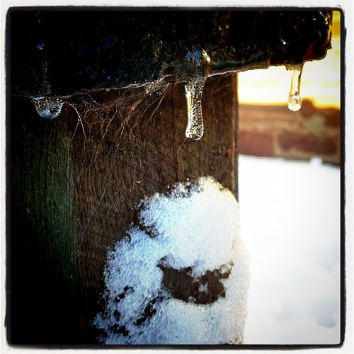 Icicles and spiderwebs