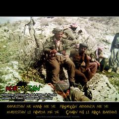 Peshmerge kurdistan    (Kurdistan Photo ) Tags: freedom democracy peace iran iraq syria fighters genocide kurdistan barzani kurd anfal barzan  peshmerge  krdistan  pmerge