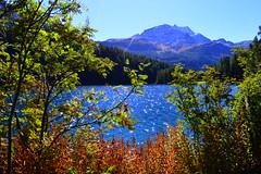 Herbst am Silvaplanersee im Oberengadin (barbarasteinemann) Tags: bergsee herbst schweiz graubünden engadin stmoritz silvaplanersee silvaplana