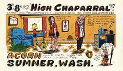 The Viking: High Chaparral & Acorn - Sumner, Washington (73sand88s by Cardboard America) Tags: qsl cb cbradio vintage qslcard theviking dirty turtle washington