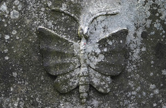 Tomb detail (michael_hamburg69) Tags: friedhof cemetery museum butterfly germany deutschland symbol hamburg papillon mariposa freilichtmuseum hamburgo hambourg ohlsdorf farfalla seele schmetterling amburgo cimetière camposanto бабочка кладбище 汉堡 gottesacker freieundhansestadthamburg lepidopteran heckengarten yī húdié hànbǎo 一只蝴蝶 zhī [漢堡] dammtorfriedhof dammtorfriedhöfe grabmalkulturimwandelderzeit grabmalkultur bestattungskultur [一隻蝴蝶] lepidophera symbolfürdieentfliehendeseele