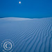 White Sands Moonlight