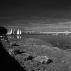 Sailing club (Skink74) Tags: uk morning england sky blackandwhite 120 6x6 film ir boats sussex bosham sailing mud westsussex harbour bronica infrared lowtide yachts rodinal slipway efke r72 s2a zenzabronicas2a ir820 nikkoroc50mm128 nikkoroc50f28 s2am022 filmdev:recipe=5952