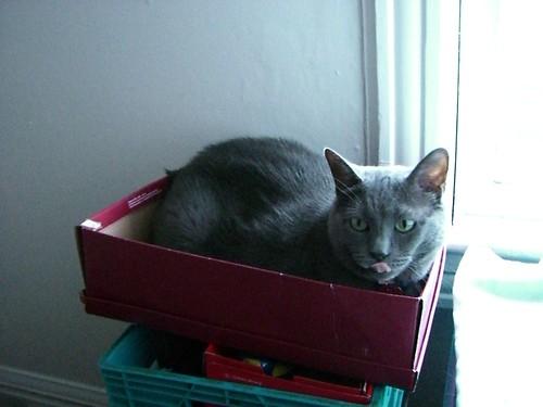 Ella helps me pack