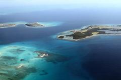 Paradise (jkaiser's) Tags: blue sea pelicans birds azul paradise venezuela gulls playa pajaros waters losroques roques pelicano svlr