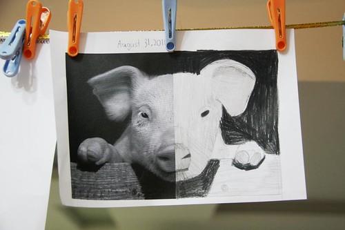 sprite's pig symmetry