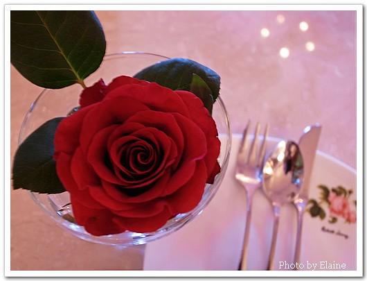 古典玫瑰園2
