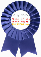 july 2010 photo of the month award
