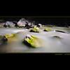 flowing zmuttbach @ zermatt switzerland (Toni_V) Tags: bw blur green creek river square schweiz switzerland europe suisse hiking bach filter zermatt wallis minitripod valais 2010 randonnée longexpsoure novoflex d300 sigma1020mm zmutt magicball nd110 abigfave 100901 dsc3616 ©toniv zmuttbach