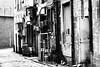 back alley (neon dog) Tags: city canon graffiti glasgow 70300mm ziggy alleys