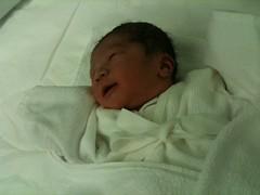 産まれた直後のとらちゃん@分娩室