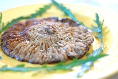 praetud sirmik/fried grey singer (parasol mushroom)