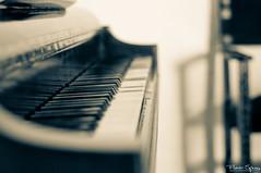 Melodia IV (FlavioSpezia) Tags: