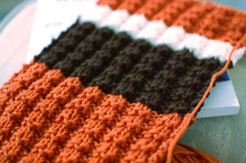 texas longhorns scarf