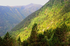 Andorra (D-A-O 1 Million Views! Thank you!) Tags: trees colour nikon view national mountainside parc andorra d90 ordino