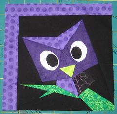 purple peeping owl