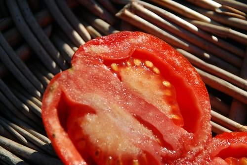 last tomatoes 3