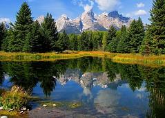 Grand Teton National Park (udbluehens) Tags: reflections grandteton grandtetonnationalpark schwabacherslanding grandtetonfallcolors