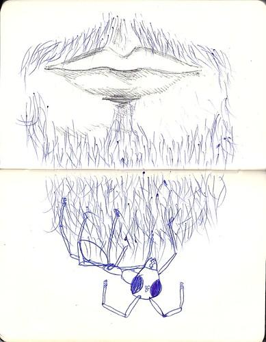 fourmi-barbe