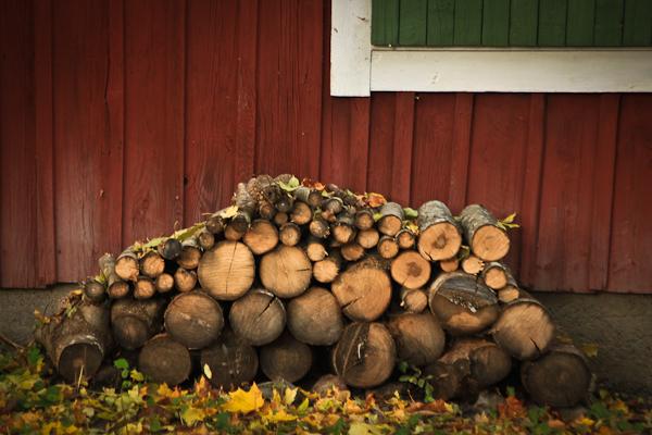 Swedish fall #03