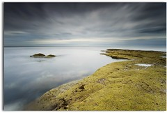 Lost coastline (blue fin art) Tags: longexposure blue rock scotland gloom berwickupontweed