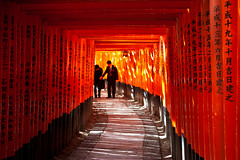 Fushimi Inari taisha toriis, Kyoto, Japan / Japn (Lost in Japan, by Miguel Michn) Tags: travel friends light red people amigos beauty japan japanese luces kyoto shrine shadows inari gente camino path religion culture viajes  kioto shinto torii  sombras jinja cultura fushimiinari belleza santuario japons japn fushimiinaritaisha  sunlights  fushimiku sintoismo  flickraward flickraward5