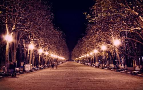 Парк Горького, главная аллея ©  Aleksandr Osipov