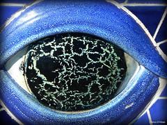 El ojo de la ballena azul * (Franco D´Albao) Tags: blue sculpture azul lumix ceramics escultura galicia whale cerámica ballena cetáceo ocon ríadevigo leicalens moaña omorrazo dalbao francodalbao