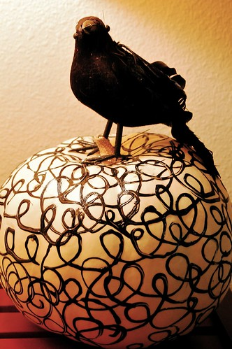 Blackbird & Swirl