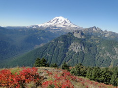 Rainier from below Shriner Peak.