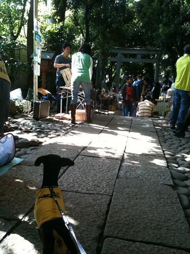 代々木八幡神社で青空個展です。いくつか買い物をしました。