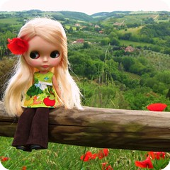 (Angel~Lily) Tags: italy vintage big travels europe doll faith adventure tuscany poppies kenner blythe 1972
