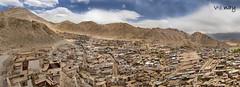 City of Leh (Vinay Venugopal) Tags: panorama canon stitch pano leh 9images cityofleh vnay lehcity vinayv