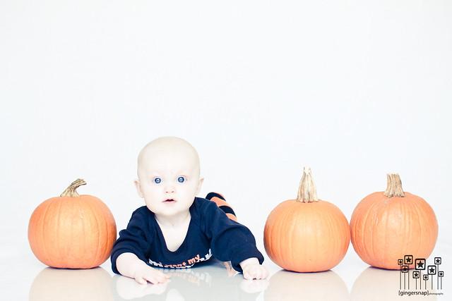 reese pumpkins2