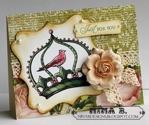 NR Queen Bird