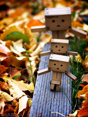 093/365:  Lead The Way Home. (Randy Santa-Ana) Tags: autumn fall nature season toys danbo gf1 project365 danboard minidanboard minidanbo 365daysofdanbo