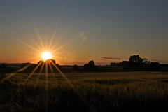 Tuscany sunset (paolo.carlini) Tags: