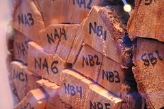Chris Engman N logs Seattle Washington USA (Wonderlane) Tags: seattle art texture word real us washington log focus order northwest cut number use alphabet concept conceptual bundle lumberjack lumber organized logic arrange logged 9109 chrisengman