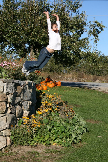 Dova jumping